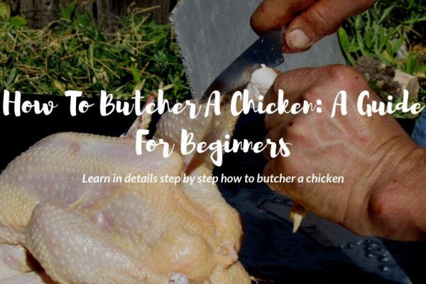 How to Butcher A Chicken: A Guide For Beginners