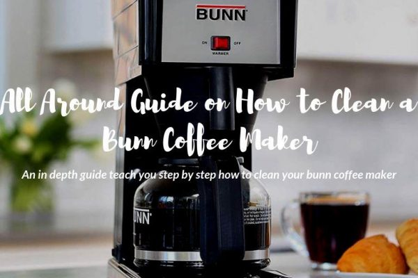 All Around Guide on How to Clean a Bunn Coffee Maker